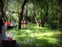 水上生活のトンレサップ湖遊覧