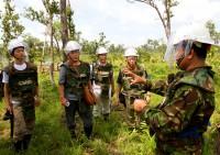 アキラ氏が代表を務める地雷撤去団体の作業を見学