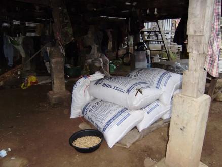 収穫された大豆が袋詰めされ,積んであります。袋にはタイ語で何やら書かれています。袋は業者が55~60ドルで買い取り,タイへ持って行って売るとのことです。