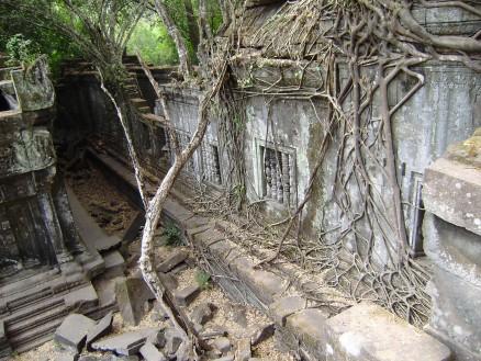 巨大な木の根が城壁を覆い,パズーとシータが城に降り立ったときの情景を思い起こさせます。