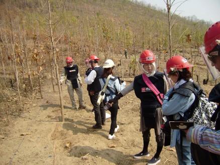 地雷原。今立っている場所のすぐわきで地雷が発見されました。
