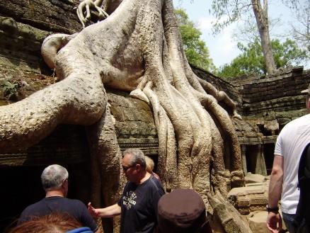 有名な遺跡の一つ,タプロム遺跡(宿泊しているホテルと同じ名前の遺跡)。木が城壁と融合してます。これもまたラピュタっぽいと思ってしまうのは,ラピュタファンの性・・・。