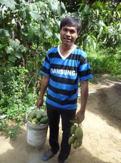 畑に行ってマンゴーを採ってきてくれたラブットさん、美味しくいただきました